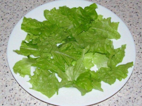 Салат с тунцом консервированным с листьями салата