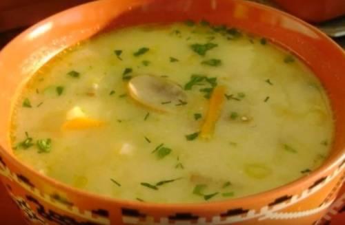 Суп из цветной капусты: рецепты быстро и вкусно